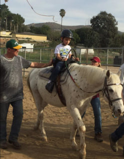 Adaptive Horseback Riding – Competition, Equipment and Programs